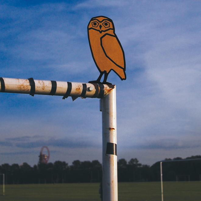 Medium owl 1